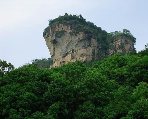 武夷山の画像 p1_21