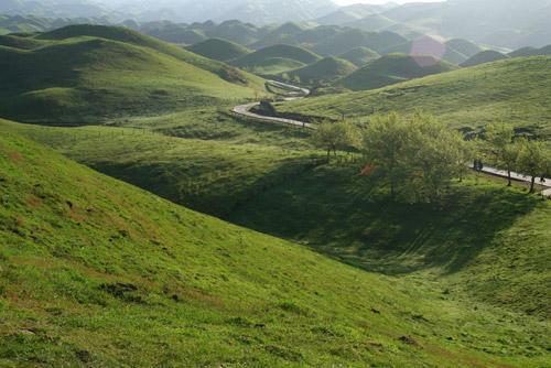 龍勝南山牧場