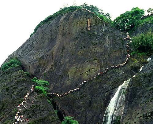 武夷山の画像 p1_16