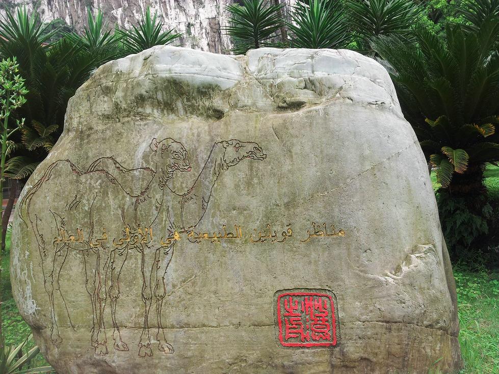 南渓山公園