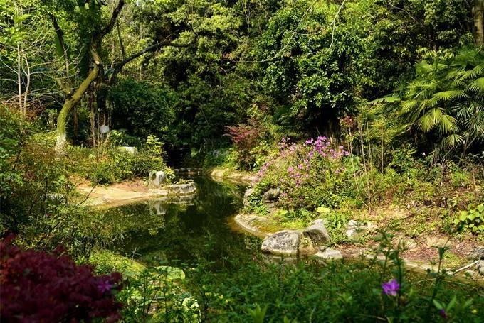 桂林雁山植物園
